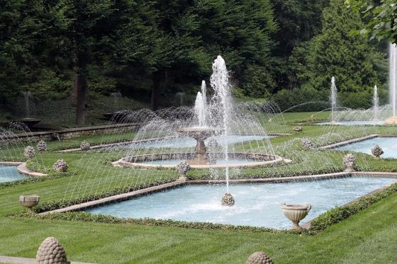 {Longwood Gardens} | Plum Pearls